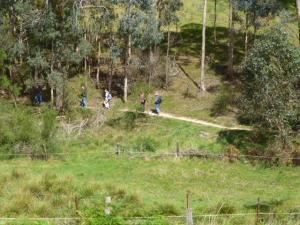 Panton Hill 1