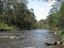 jumping creek